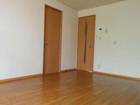 物件番号: 1110300624 リシェス・オカザキ  富山市黒崎 2LDK アパート 画像11