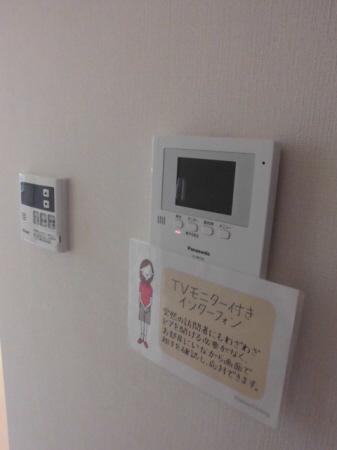 物件番号: 1110301550 D-room五福  富山市五福 1LDK アパート 画像11