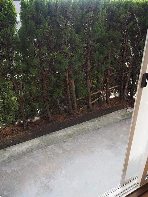 物件番号: 1110308474 シェルブランシェ  富山市小杉 2LDK アパート 画像8