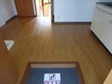 物件番号: 1110306612 メゾン・ド・ティファニー  富山市蓮町5丁目 2DK アパート 画像1