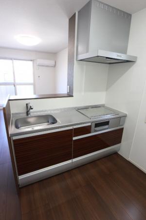 物件番号: 1110307034 D-roomひよどり  富山市鵯島 1LDK アパート 画像2